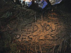 BMW: Feed Your Restless